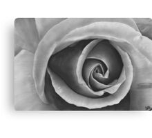 Black & Grey Rose - Dry Brush Oil Painting Canvas Print