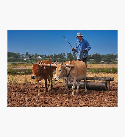 Cambodian Farmer Photographic Print