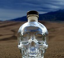Crystal Skull in the Great Sand Dunes 2 by John Windsor
