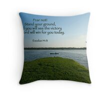 Stand your ground . . . Throw Pillow