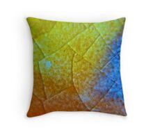 Crystaline Ceramics Throw Pillow
