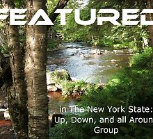 Banner Challenge for NYS GROUP-Adirondack Mtns. Upstate NY by linmarie