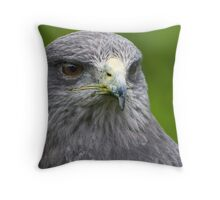 Chilean blue eagle Throw Pillow