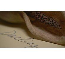 darling, Photographic Print