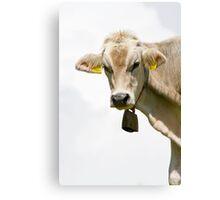 *Cheese* Canvas Print