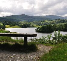 Overlooking Rydal Water by Andrew Cryer