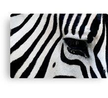 Loud Stripes Canvas Print