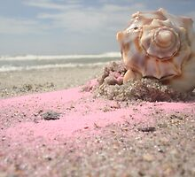Pinky Shell by stumbelina
