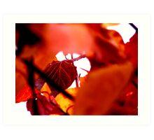 Autumn leaves - Red Art Print
