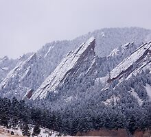Snow Dusted Flatirons by Bo Insogna