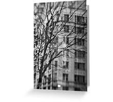 Wintry Reflection - Sydney - Australia Greeting Card