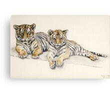 Tigercubs Canvas Print