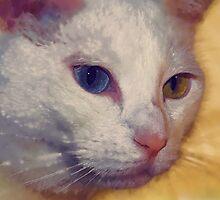 Unbelievable eyes by ♥⊱ B. Randi Bailey
