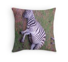 Listening Zebra Throw Pillow