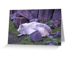 Mountain ma... goat! Greeting Card