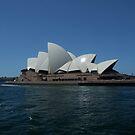 Sydney  by emma jane murphy