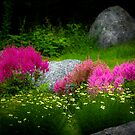 Rocks Amongst the Flowers by Charles Plant