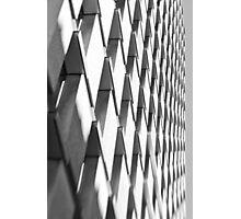 Zebragonals! - Sydney - Australia Photographic Print