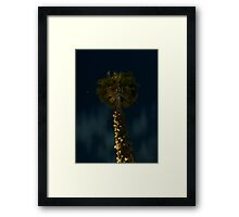 Night Palm Framed Print