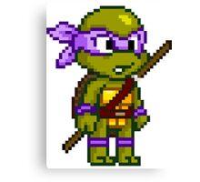 Donatello Does Machines Canvas Print