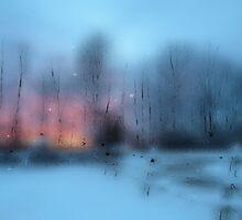 Last Light by Daniel Murray
