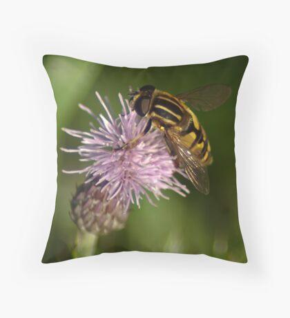 Close encounter Throw Pillow