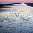 Tide Going Out... by Terri~Lynn Bealle