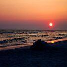 Sandcastle at Sunset by Terri~Lynn Bealle