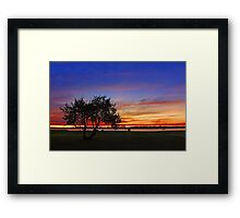 Tree At Dusk  Framed Print