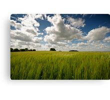 The South Downs Canvas Print