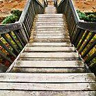 Steps by Leanne Robson