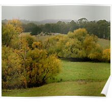 Autumn Rain, Otway Ranges,Forrest,Victoria Poster