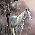 """Old White Mare"" in the Smoky Mountains National Park   by JeffeeArt4u"