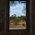 Ruin,Old Cork Station, Outback Queensland by Joe Mortelliti