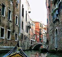 Gondola Ride - Venice  by naturelover