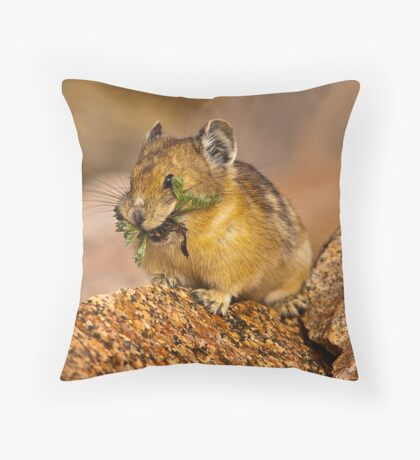 The Pika Project Throw Pillow