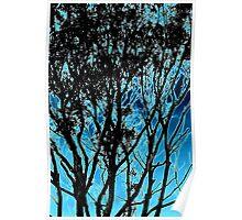 Tree Blue Poster