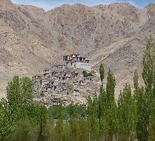 Shey Palace, Ladakh by mumuasia