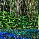 Mosaic ... Waterlilies buds , Leafs and Canes by Nira Dabush