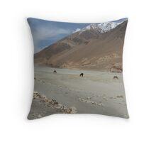 Wild horses/donkeys in Pangong Lake, Ladakh Throw Pillow