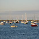 Harbor at dusk by Susan Misicka