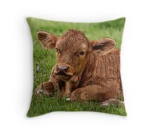I'm Bored To Tears (Special Effects) Throw Pillow