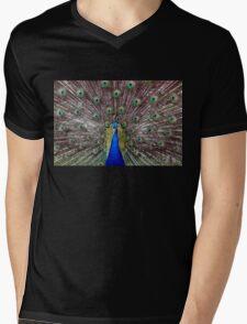 Optimism Mens V-Neck T-Shirt