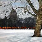 "Christo's ""The Gates"", Central Park, NY 2005 by gailrush"