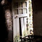 Inside Outside - Doorway of Yesterday! by Pamela Jayne Smith