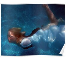 Gliding through the water Poster