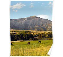 Below the Foothills of Mount Ben Lomond Poster