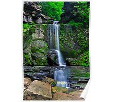 Filmore Glen State Park I Poster