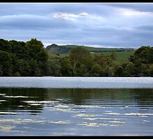 Loch View by Mike Thomson