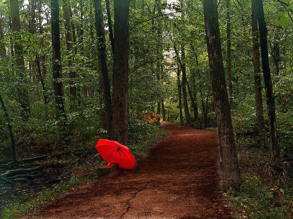 alone by Nicholas  J Mast
